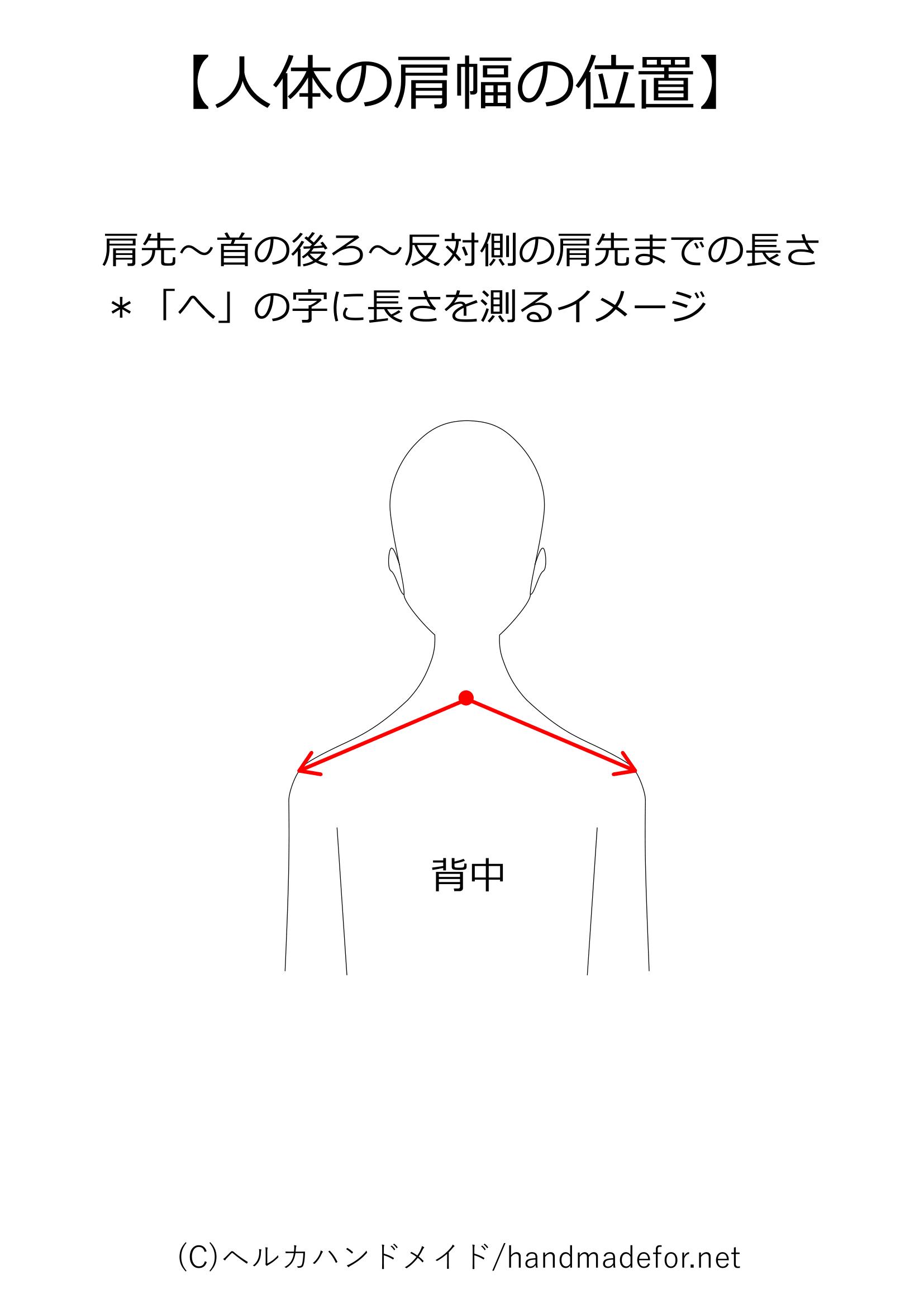人体の肩幅の測り方